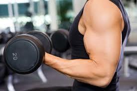 Muscle Building Diet-Ten quick tips for body builders!