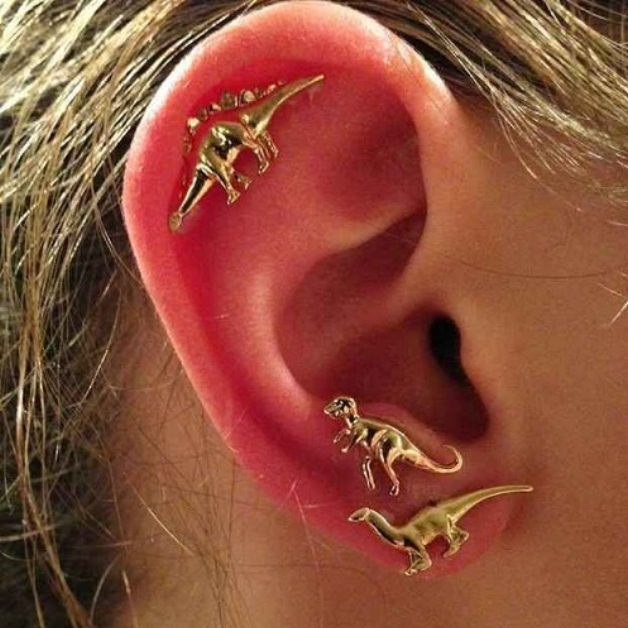 Auricle Piercing - Pain, Healing time, Price, Jewelry