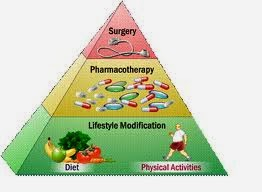 Anti-Obesity Programs