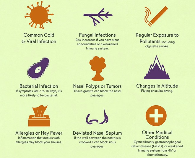 Sinus Infections Causes
